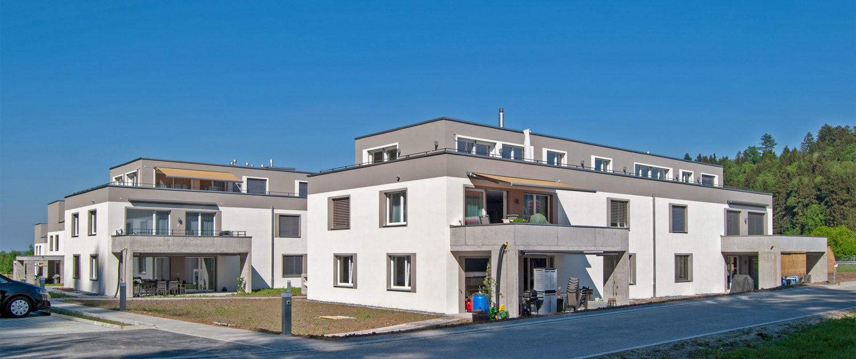 Projekt «Im Hasel» Oberwangen – Mai 2018